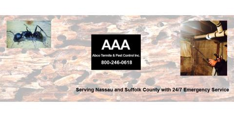 AAA Abco Termite & Pest Control Inc., Pest Control, Services, Stony Brook, New York