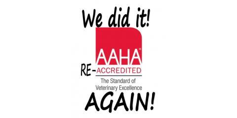 AAHA Accredited - 84 Years And Counting, Cincinnati, Ohio