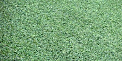How a Synthetic Lawn Will Save You Money, Ewa, Hawaii