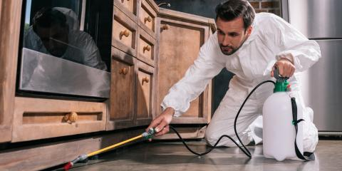 3 Qualities to Look for in a Pest Removal Provider, Charleston, Arkansas