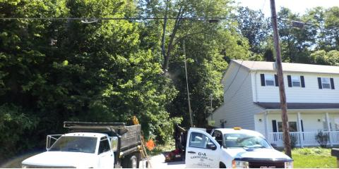 ​Receive Affordable Tree Service & Stump Removal From G & A Tree and Lawn, Cincinnati, Ohio
