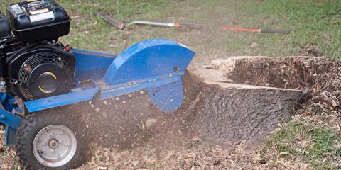 Affordable Stump Grinding, Stump Grinding, Services, Calico Rock, Arkansas