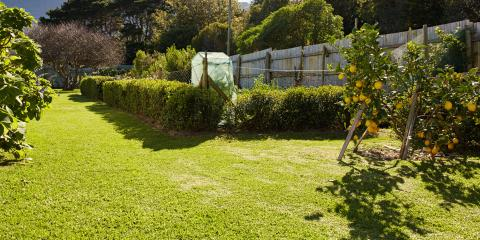 5 Landscaping Tips for Homes With Fences, Ewa, Hawaii