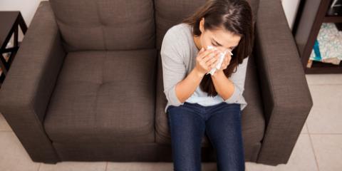 Are You Dealing With Hay Fever or Indoor Allergies?, La Crosse, Wisconsin