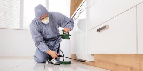 5 Ways Termites Can Harm Your Home & Health, Dothan, Alabama