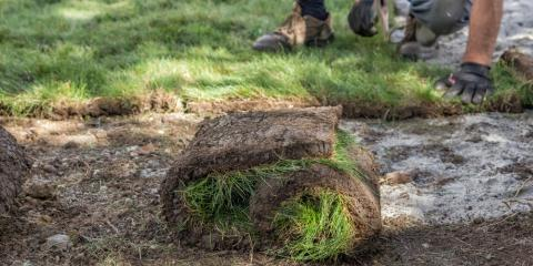 Sod Installation: What's the Best Time to Get the Job Done?, Victoria, Alabama