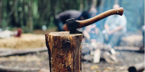 5 Tools That Make Brush & Land Clearing Easier, Anchorage, Alaska