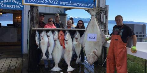 Tips for black bear hunting in alaska homer for Alaska halibut fishing season
