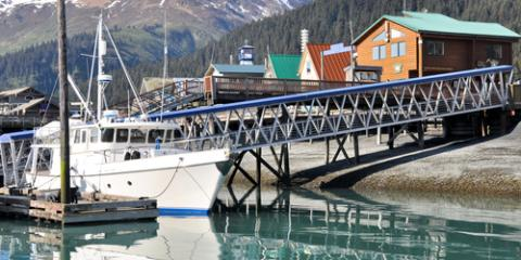 Alaska fishing discover the best time to go homer ocean for Best time to fish in alaska