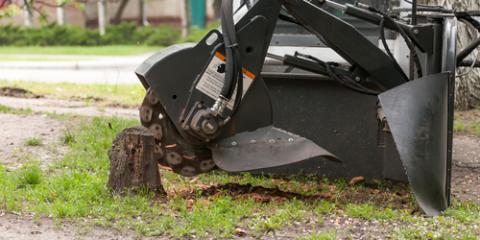 3 Reasons You Should Schedule Stump Grinding, Saluda, North Carolina