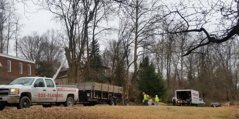 Trusted Tree Care Professionals in Illinois and Missouri, Wood River, Illinois