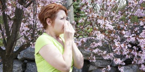 Immunology 101: Common Seasonal Allergies, North Hempstead, New York