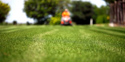 Landscaping Specialists Explain How to Prep Your Lawn for Spring, Mystic, Connecticut