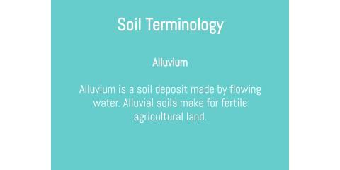 Soil Terminology: Alluvium, Brandon, Florida