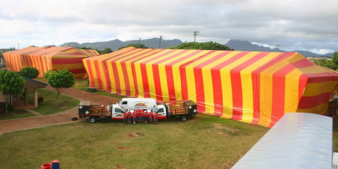 4 Benefits of Choosing Termite Tenting, Lihue, Hawaii