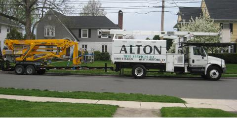 Ask These 4 Questions When Hiring a Tree Service, West Hartford, Connecticut
