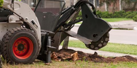 3 Advantages Homeowners Gain From Stump Grinding, West Hartford, Connecticut