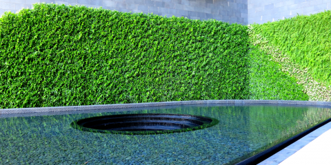 3 Mistakes Businesses Make With Living Walls, Ewa, Hawaii