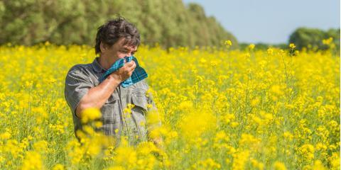 Allergy Care Experts Discuss 3 Common Symptoms & Treatments, Anchorage, Alaska