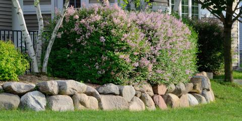 What Is Soil Erosion & How Can You Prevent It? , Anchorage, Alaska