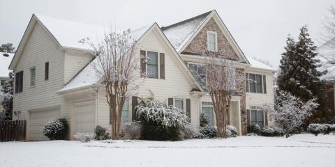 How Can a Snowstorm Damage Your Trees?, Anchorage, Alaska