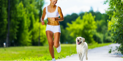 Veterinary Expert Explains the Importance of Daily Exercise For Your Pet, Cabot, Arkansas