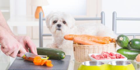 Veterinarian-Approved Tips for Healthy & Natural Dog Treats, Foley, Alabama