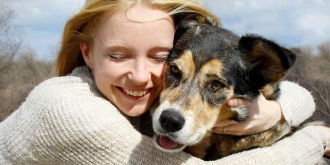 Pet Supplies FAQs: State-Approved Smart Tags Reunite Lost Pets With Their Owners, Foley, Alabama