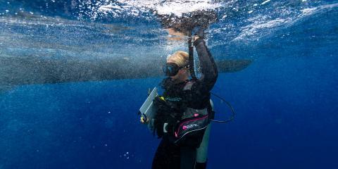4 FAQ About Scuba Diving, ,