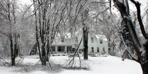5 Winter Lawn Maintenance Tips From Arctic Green, Anchorage, Alaska