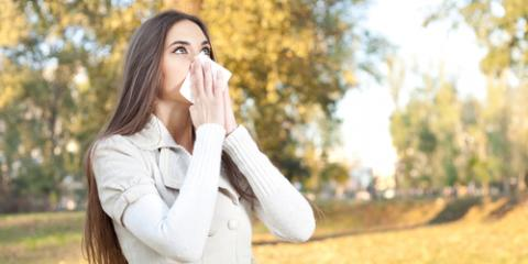 Ear, Nose, & Throat Doctor Answers 4 FAQ About Seasonal Allergies, Lake Havasu City, Arizona