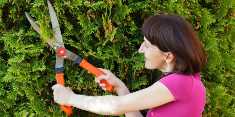 The Do's & Don'ts of Shrub Pruning, Cabot, Arkansas