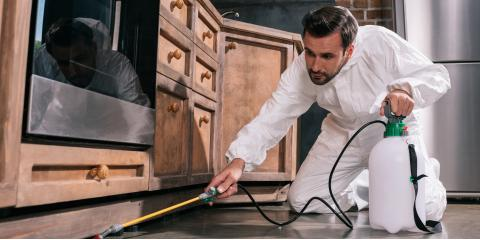 3 Benefits of Professional Pest Control Services, Charleston, Arkansas