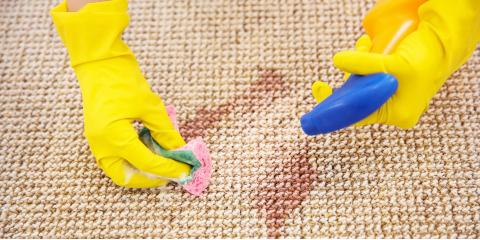 How Often Does Your Area Rug Need Spot Cleaning?, Arlington, Texas