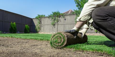 3 Maintenance Tips for Artificial Lawns, Bullhead City, Arizona