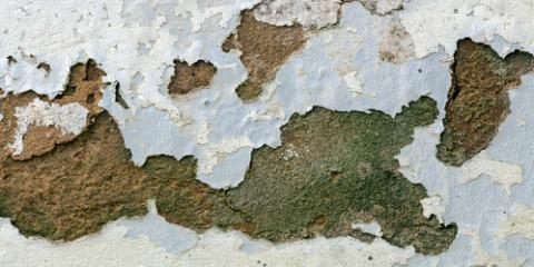 Asbestos Testing Experts Discuss Green Mold, Bridgeport, Connecticut