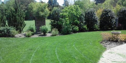 3 Benefits of Arranging for Year-Round Lawn Care Services, Asheboro, North Carolina