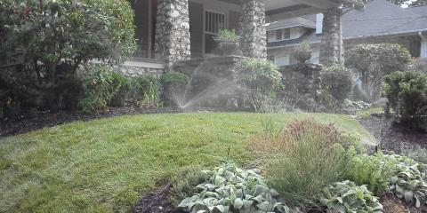 Why Use a Lawn Care Service to Maintain Your Lawn?, Asheboro, North Carolina