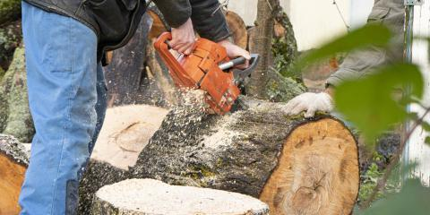 4 FAQ About Tree Removal , ,