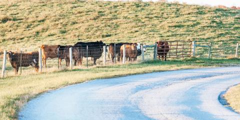 3 Tips for Building a Cattle Fence, Ashland, Missouri