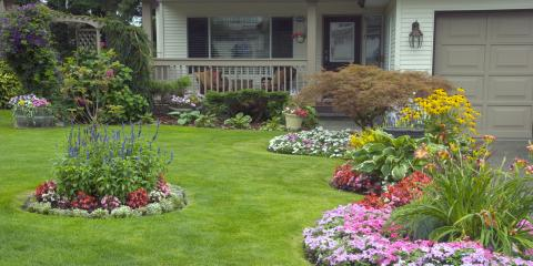 Frequently Asked Questions About Lawn Grubs, Austinburg, Ohio