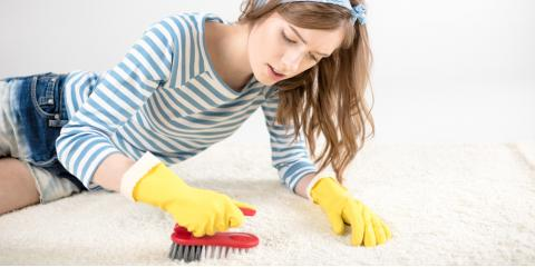 DIY vs. Professional Carpet Cleaning: What's the Difference?, Ashtabula, Ohio