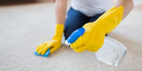 Post-Carpet Cleaning: 5 Aftercare Tips, Ashtabula, Ohio