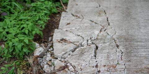 The Common Types of Asphalt Cracks, Charlotte, North Carolina