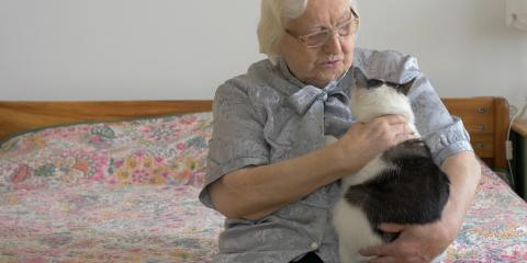 3 Benefits of Pets for Those in Assisted Living, Kalispell, Montana