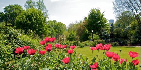 4 Destinations That Elevate Senior Living in Atlanta, Atlanta, Georgia