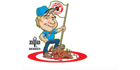 Atlantic Pest Control Shares Everything You Should Know About Termites, Atlantic, Iowa
