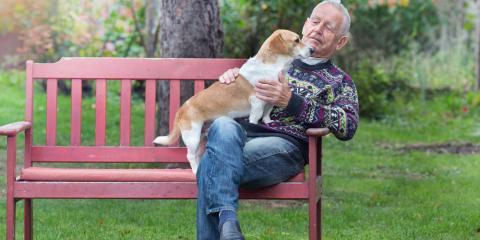 Is Elderly Care Appropriate for Every Senior?, Denver, Colorado