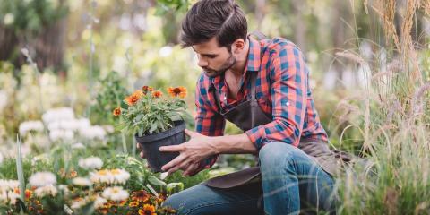 4 Tips to Transform an Overgrown Garden, Austinburg, Ohio