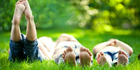 3 Tips to Keep Your Lawn Healthy This Summer, Westerville, Ohio